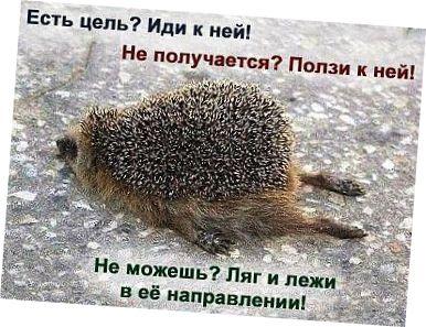 kak borotsya s leniu 4 способа побороть лень